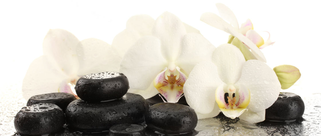 Three Lotus Massage and Wellness in Buffalo NY